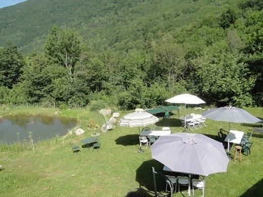 bassin agrément parasol espace pic-nique