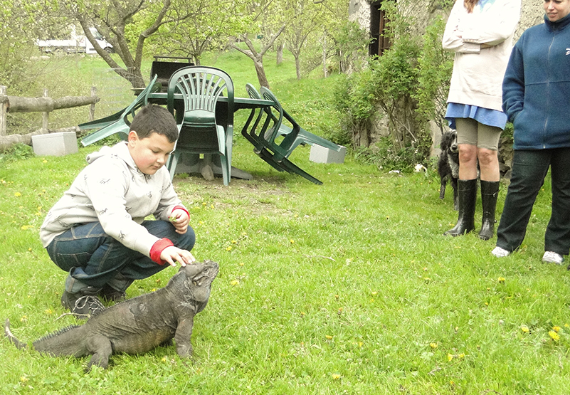 iguane enfant protection nature sauvegarde environnement